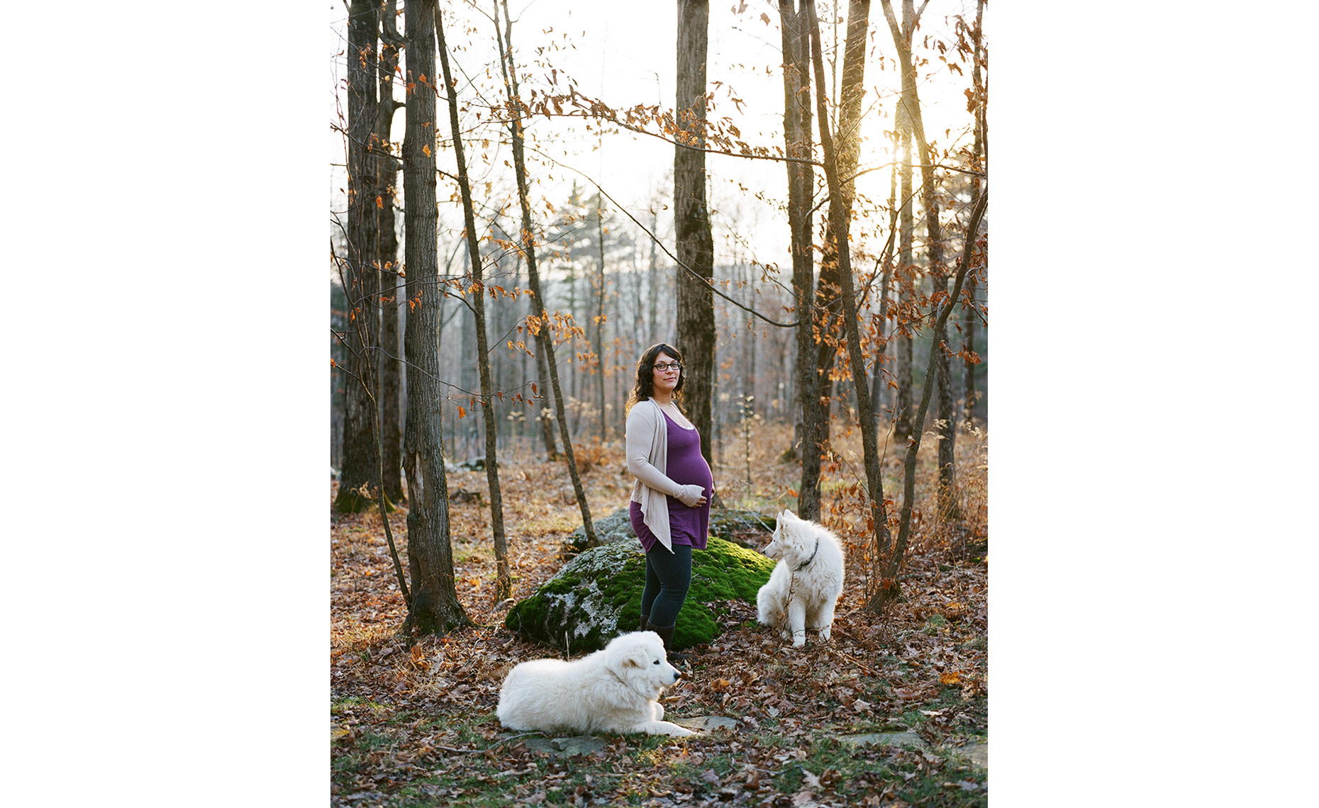 pregnant natural dogs portraits woods