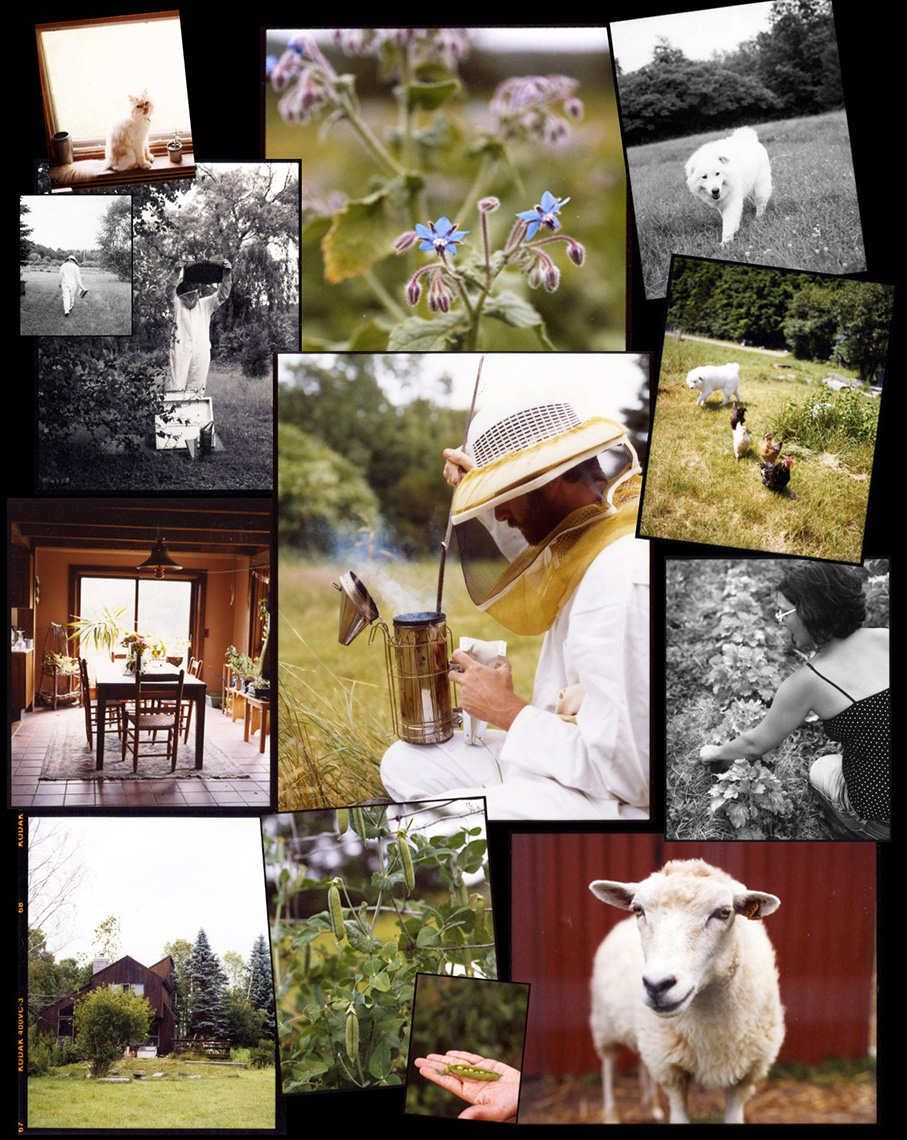farmcollage-2